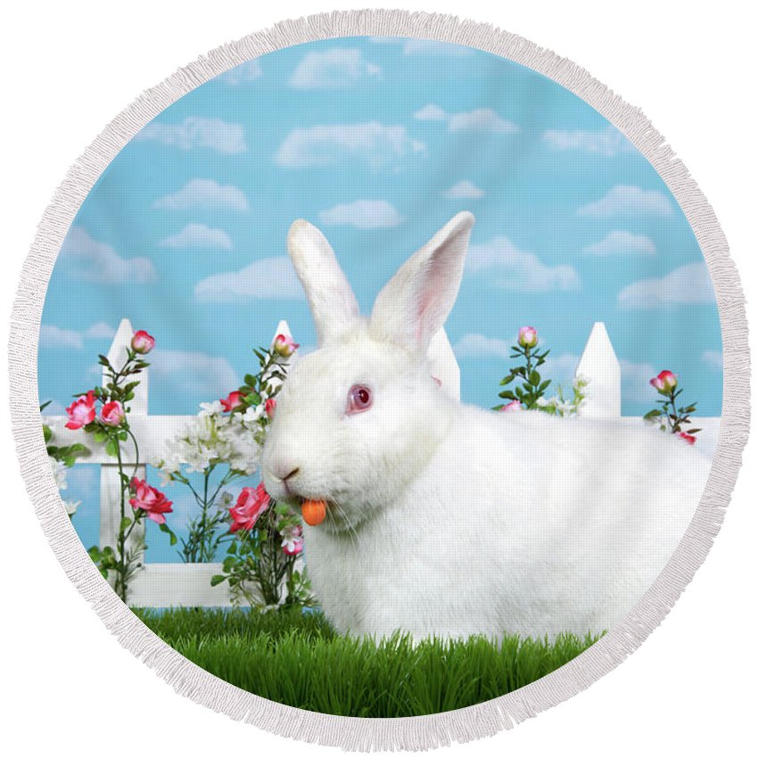 Easter Round Beach Towel featuring the photograph Spring Bunny Loves His Carrots by Sheila Fitzgerald