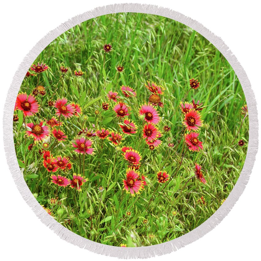 Grassy Meadow Round Beach Towel featuring the photograph Spring Flowers by Soni Macy