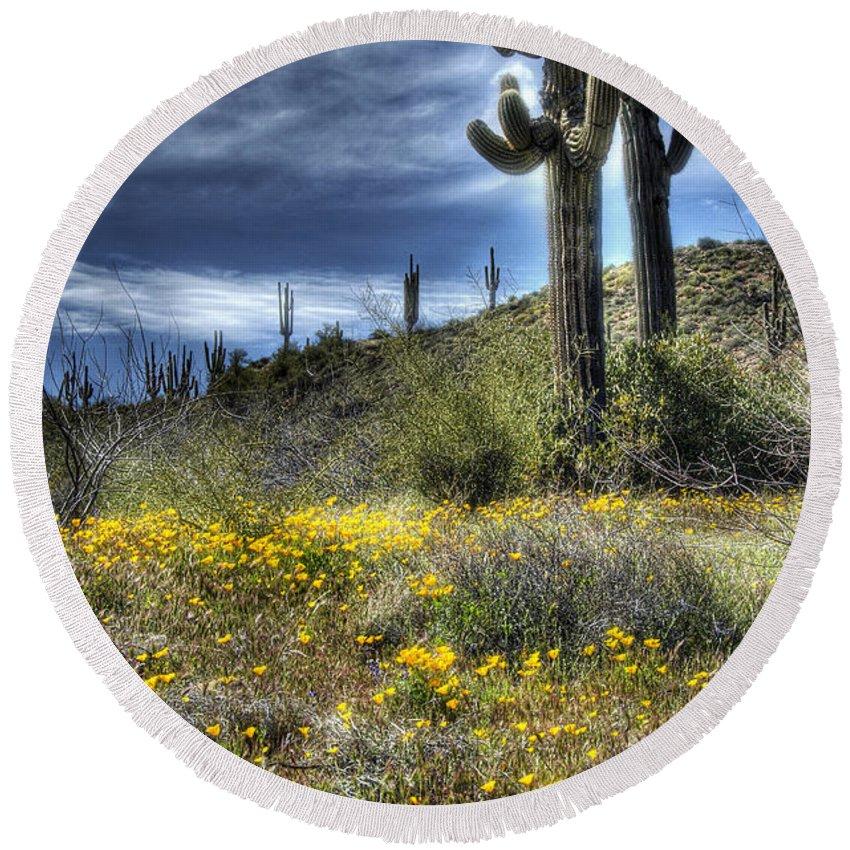 Arizona Round Beach Towel featuring the photograph Spring In The Desert by Saija Lehtonen