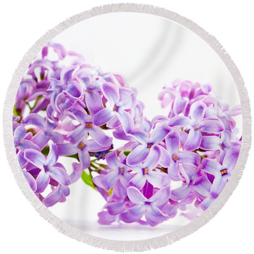 Lilac Round Beach Towel featuring the photograph Spring Lilac Flowers Blooming Isolated On White by Michal Bednarek