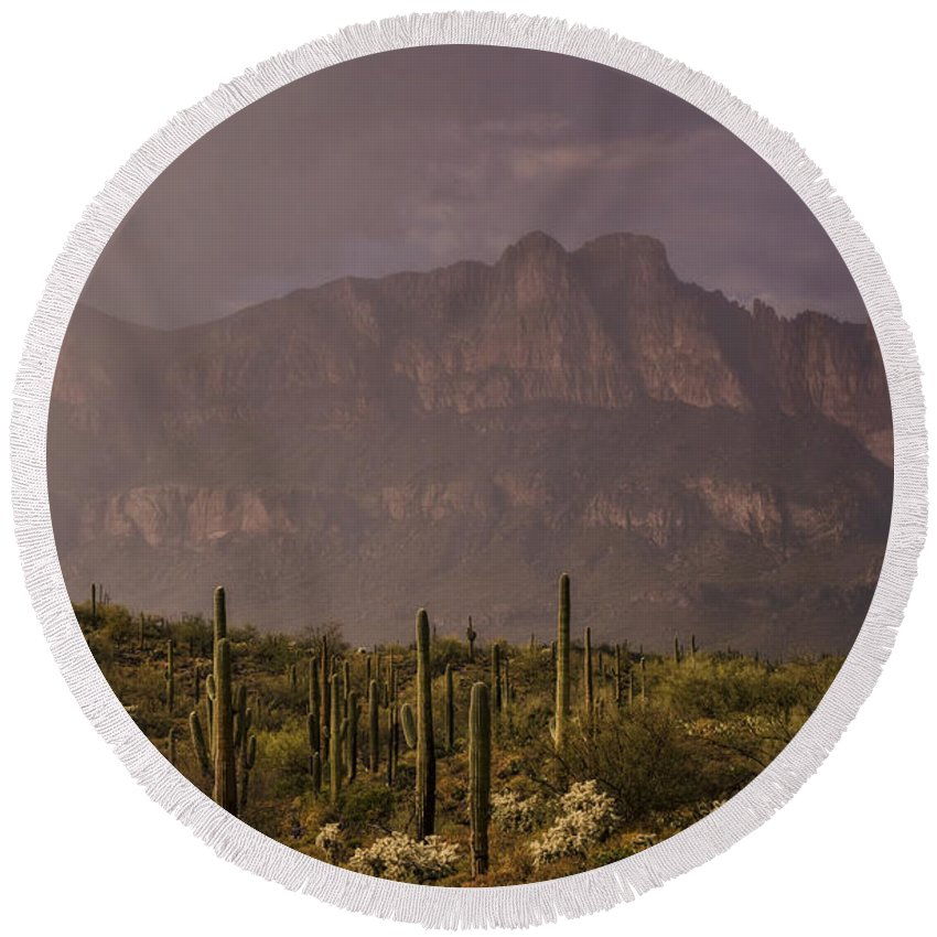 Arizona Round Beach Towel featuring the photograph Spring Rain In The Sonoran by Saija Lehtonen