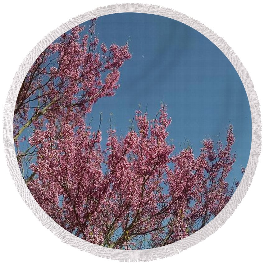 Spring Redbud Tree Round Beach Towel featuring the photograph Spring Redbud Tree by Connie Young