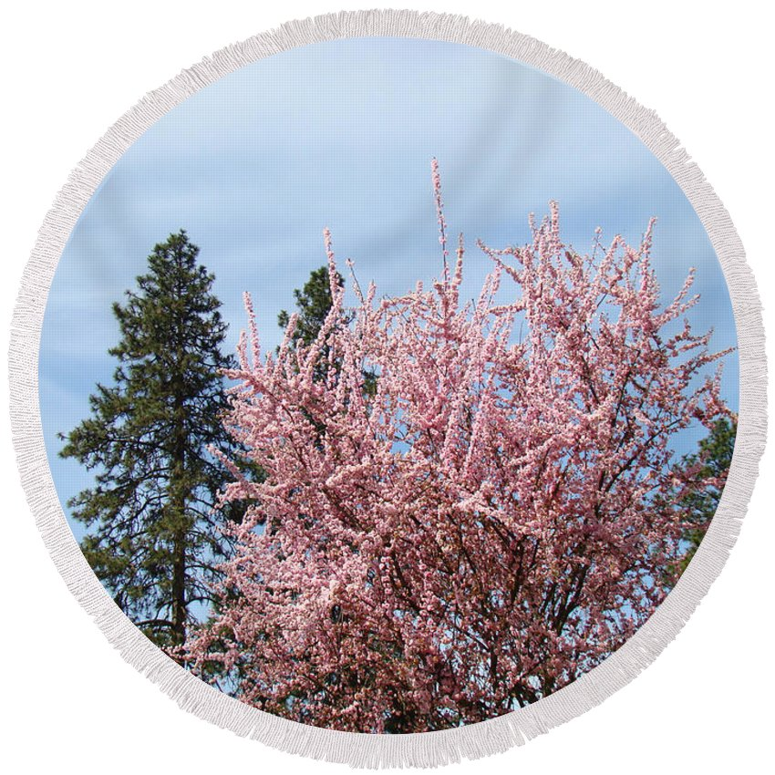 Trees Round Beach Towel featuring the photograph Spring Trees Bossoming Landscape Art Prints Pink Blossoms Clouds Sky by Baslee Troutman