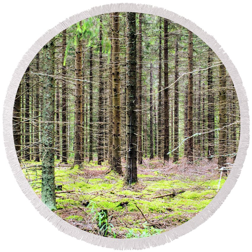 Finland Round Beach Towel featuring the photograph Spruce Forest by Jarmo Honkanen
