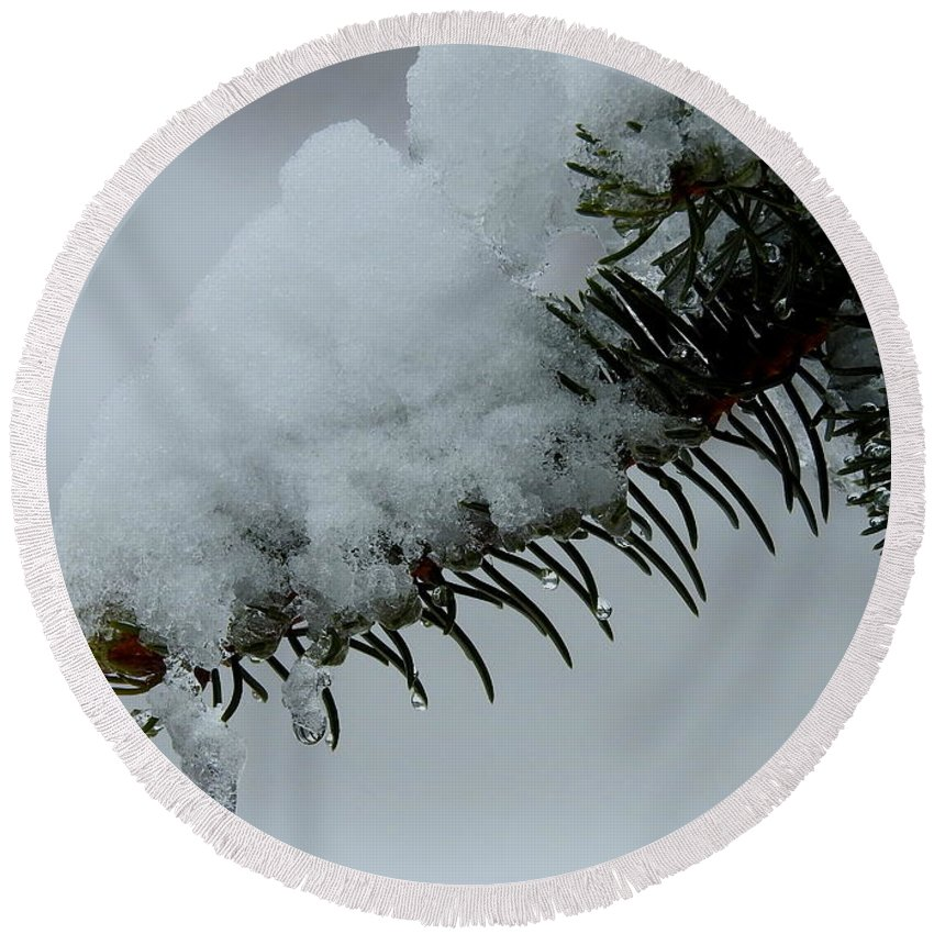 Spruce Round Beach Towel featuring the photograph Spruce Needles And Ice by Betty-Anne McDonald