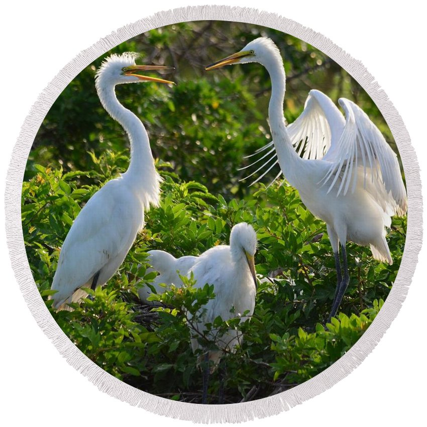 Great Egret Round Beach Towel featuring the photograph Squawk Of The Great Egret by Patricia Twardzik