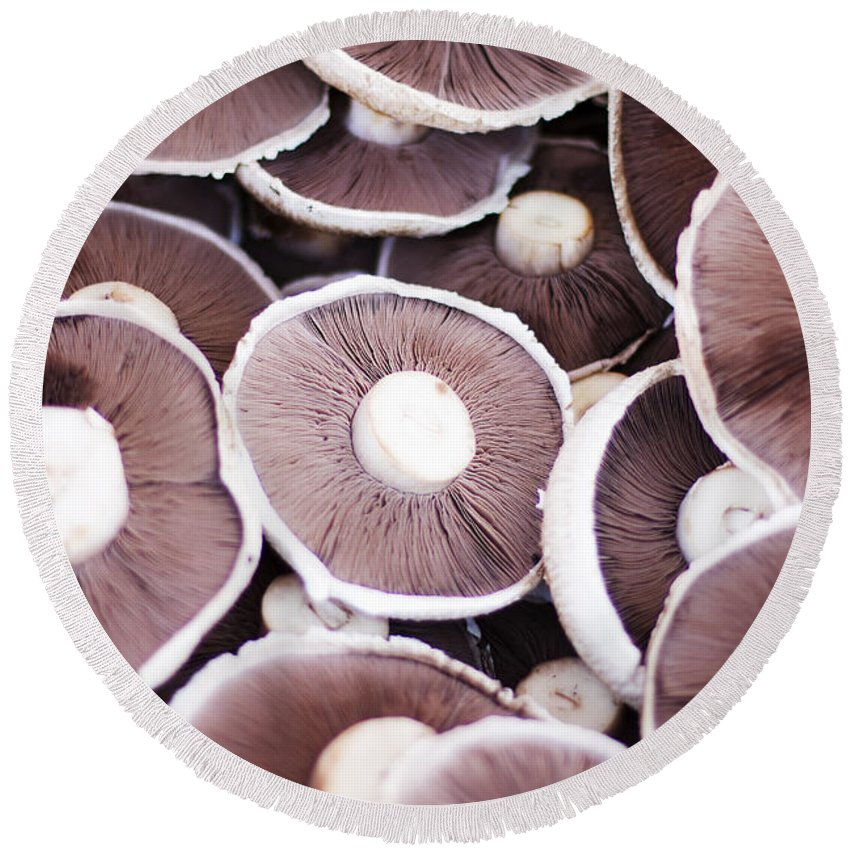 Close Round Beach Towel featuring the photograph Stacked Mushrooms by Jorgo Photography - Wall Art Gallery