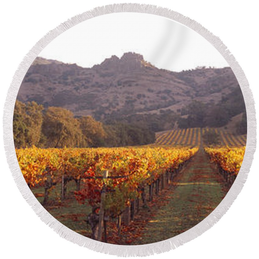 Photography Round Beach Towel featuring the photograph Stags Leap Wine Cellars Napa by Panoramic Images