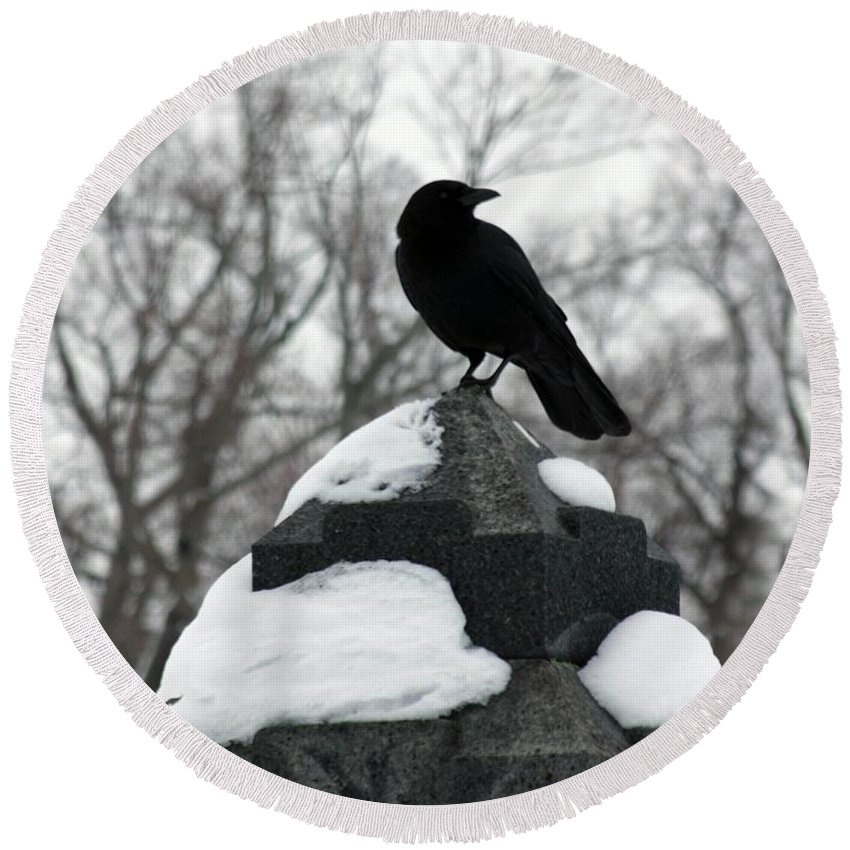Winter Crow Photograph Round Beach Towel featuring the photograph Crow Stance On Cold Stone by Gothicrow Images