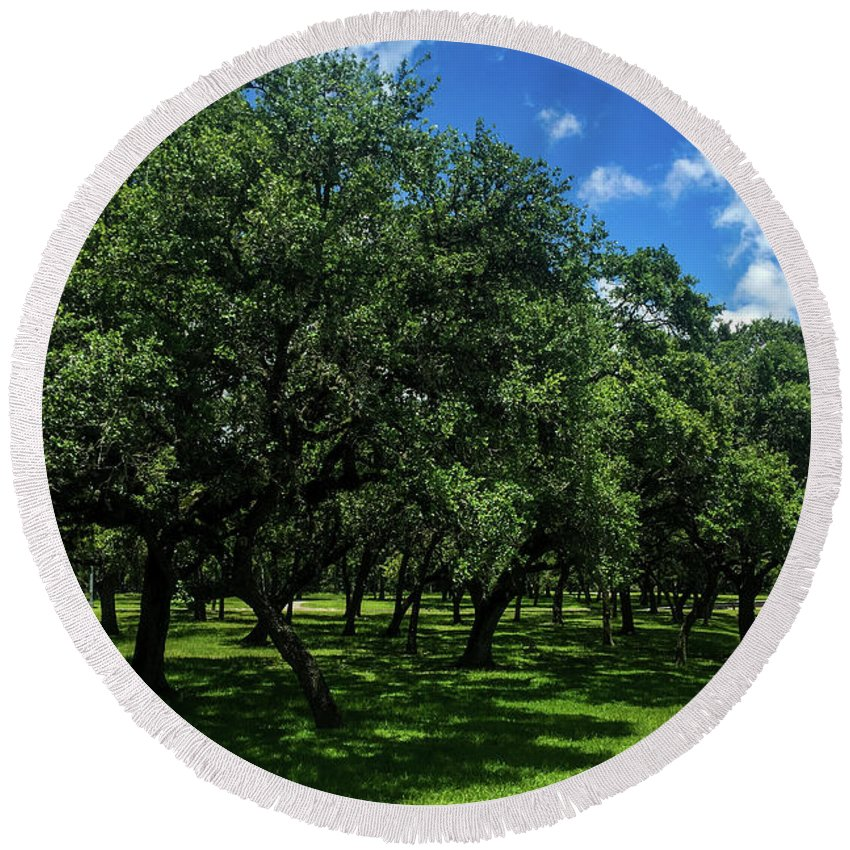 Stand Of Oaks Round Beach Towel featuring the photograph Stand Of Oaks by Debra Martz