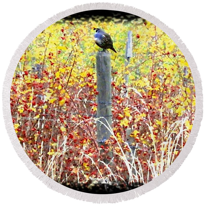 Quail Round Beach Towel featuring the digital art Standing Guard by Will Borden