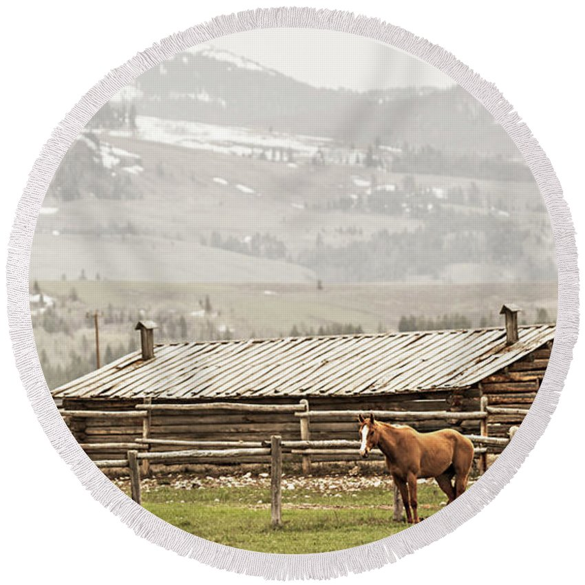 Horse Round Beach Towel featuring the photograph Standing Strong by Tommy Lyles