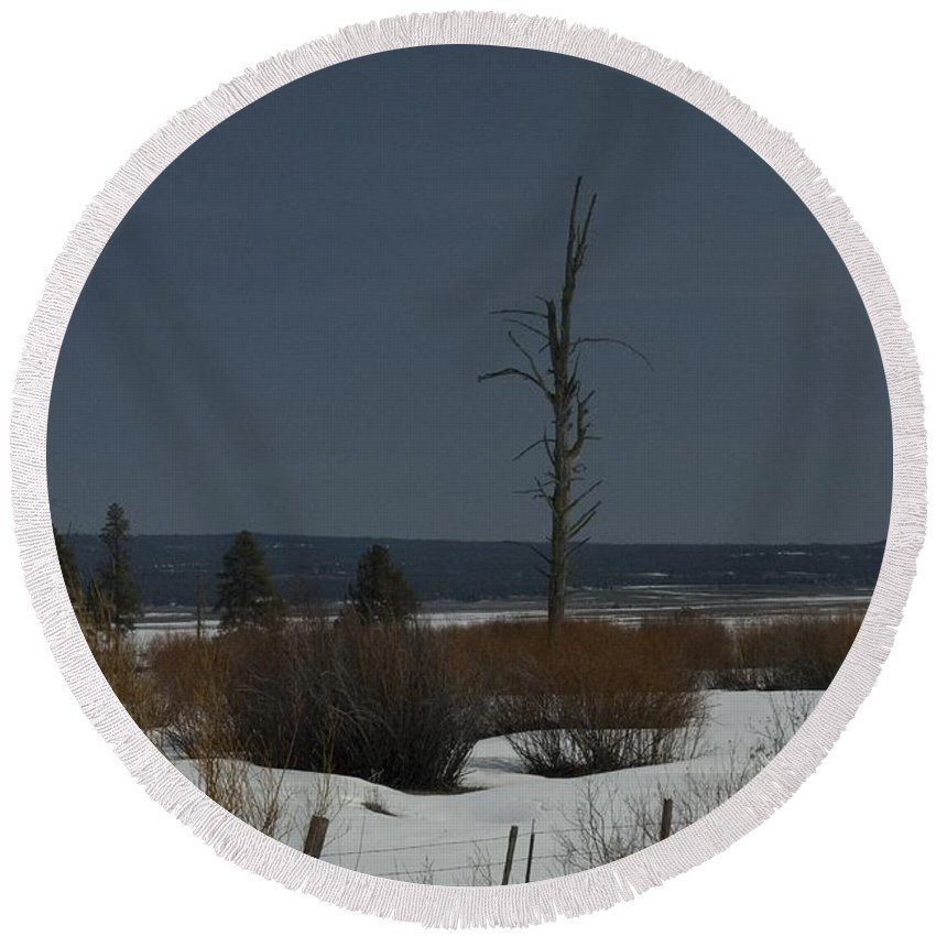 Dead Tree Round Beach Towel featuring the photograph Standing Tall by Sara Stevenson