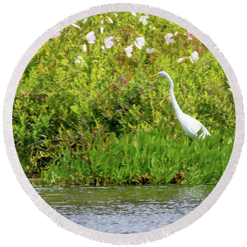 Egret Round Beach Towel featuring the photograph Stately Egret by Tom Horsch Photography