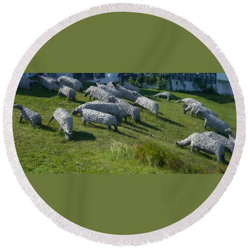 Sheep Round Beach Towel featuring the photograph Ste Flavie 002 by Line Gagne