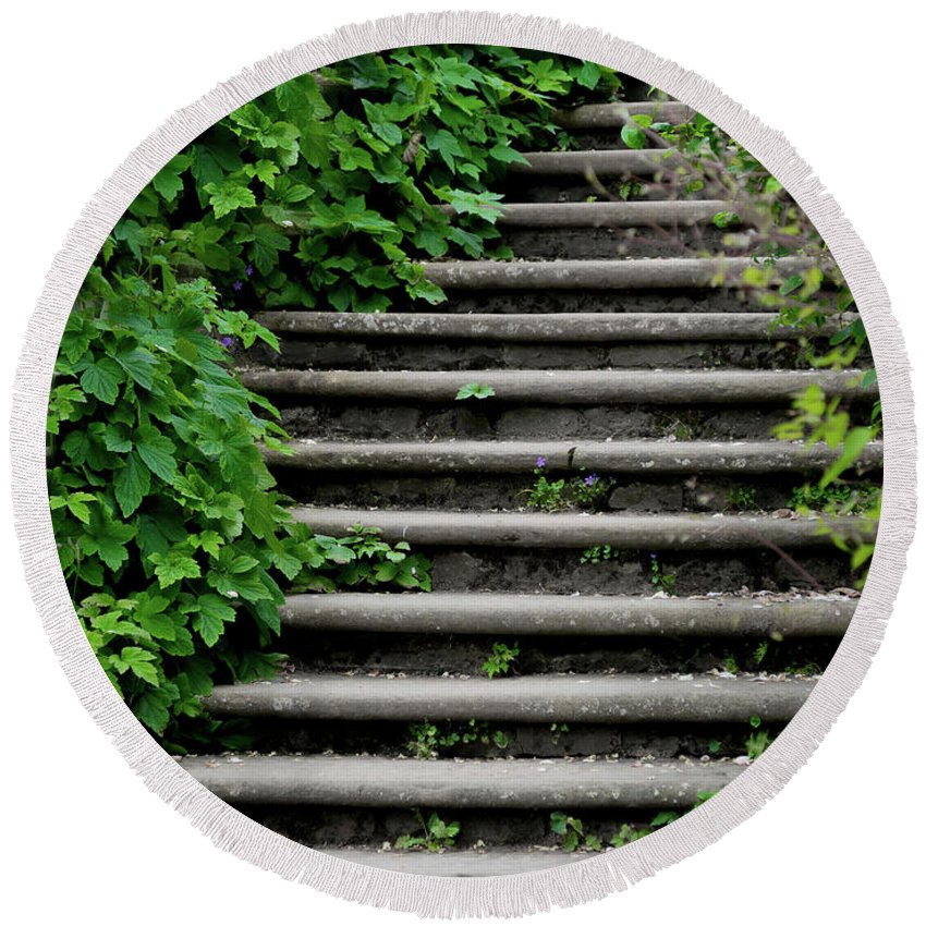 Steps Round Beach Towel featuring the photograph Steps With Ivy by Catherine Balfe