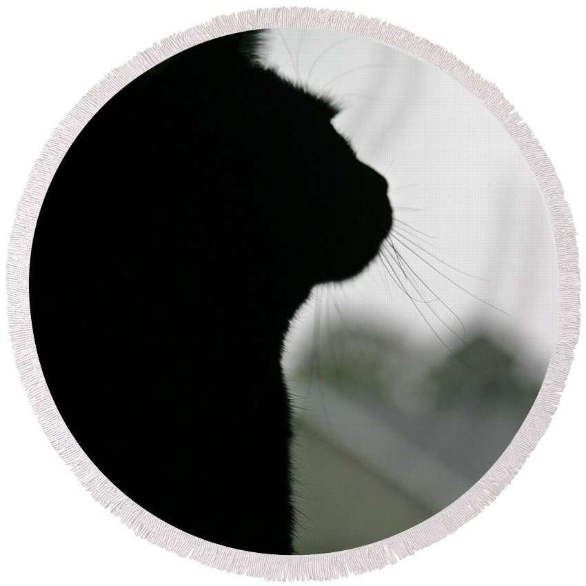 Black Cat Round Beach Towel featuring the photograph Storm Watcher by Pattie Frost