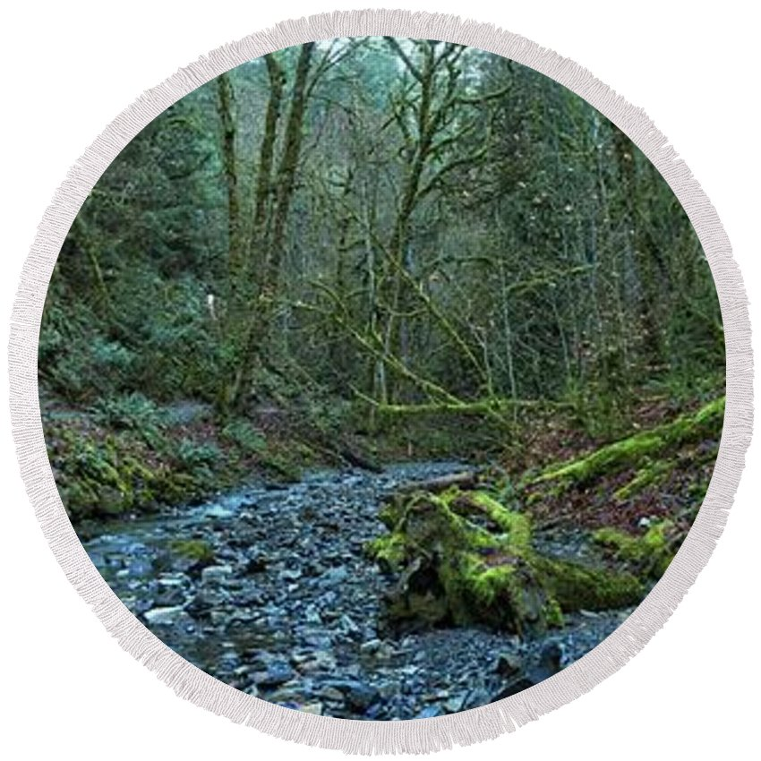 Oldstream Provincial Park Round Beach Towel featuring the photograph Streaming Through Goldstream by Adam Jewell