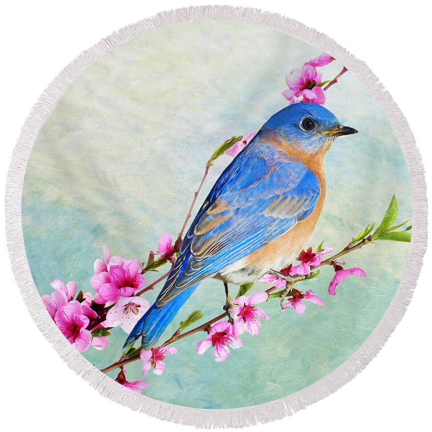 Bluebird Round Beach Towel featuring the photograph Striking A Pose by Laura D Young