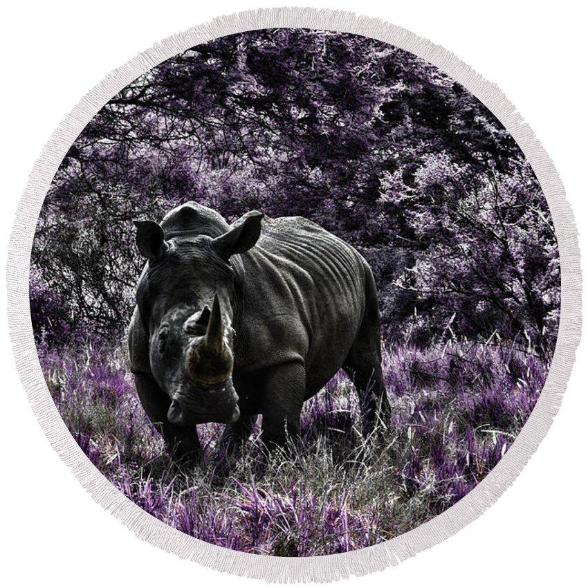 Rhino Round Beach Towel featuring the photograph Styled Environment-the Modern Trendy Rhino by Douglas Barnard