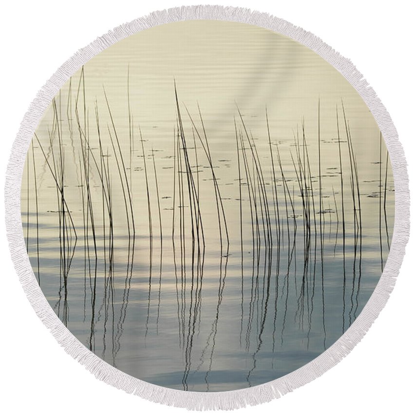 Marsh Round Beach Towel featuring the photograph Subtle Serenity by Whispering Peaks Photography