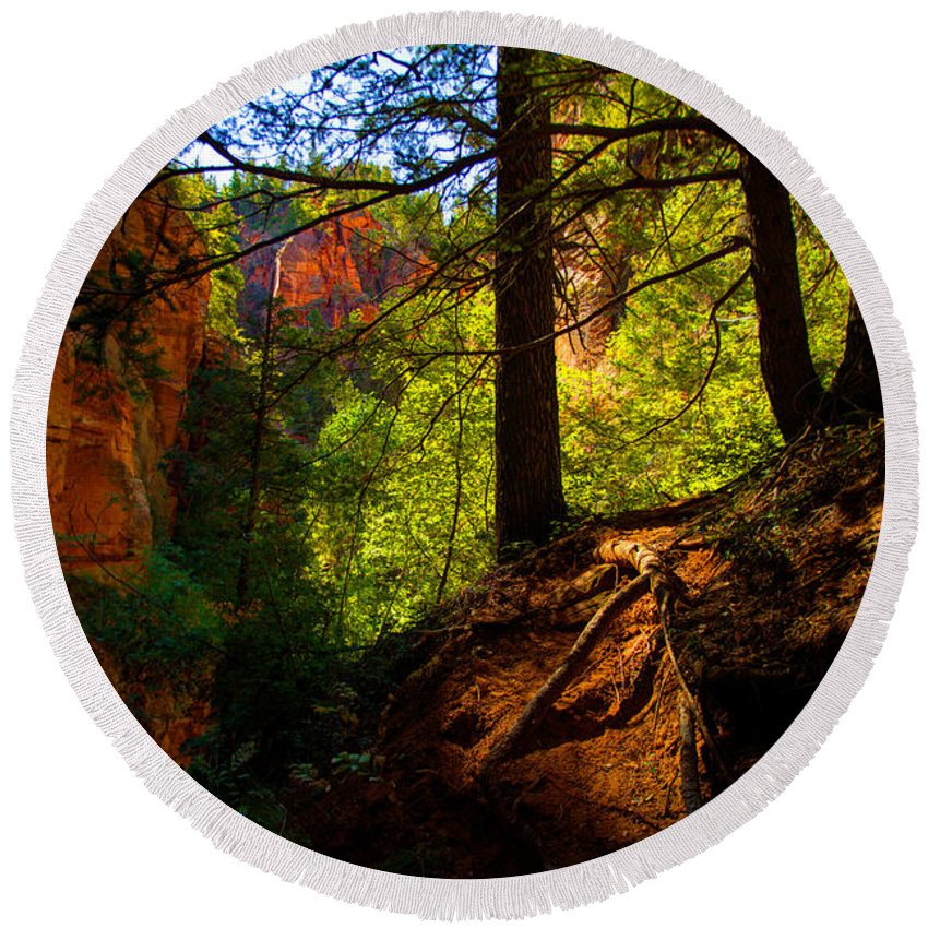 Outdoor Round Beach Towel featuring the photograph Subway Forest by Chad Dutson