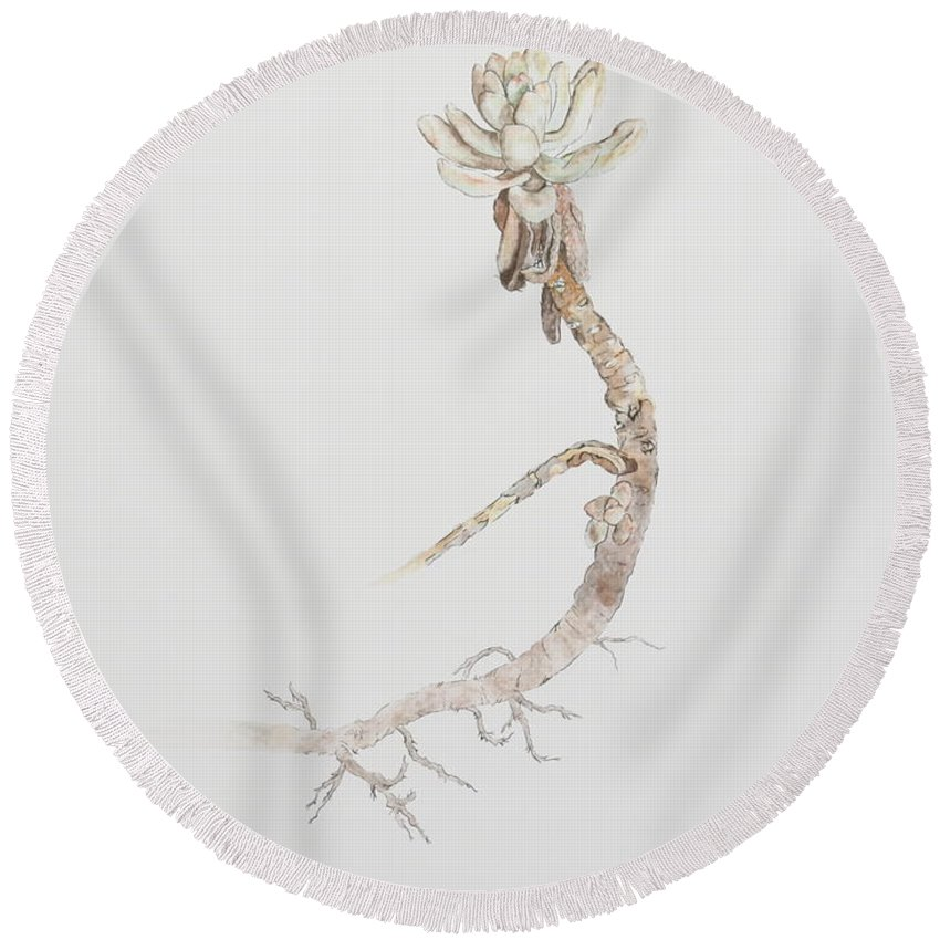 Succulent Round Beach Towel featuring the painting Succulent by Michelle Miron-Rebbe