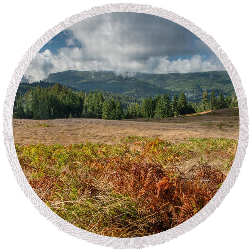 Bald Hills Round Beach Towel featuring the photograph Summer In The Bald Hills 1 by Greg Nyquist