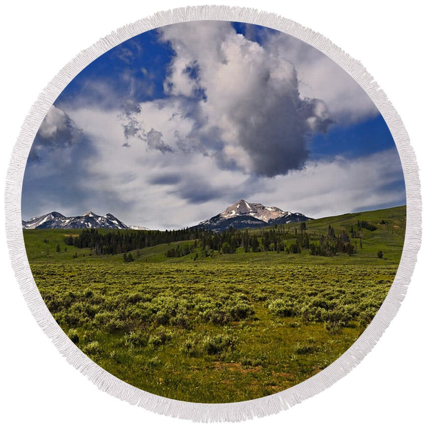 Nature Round Beach Towel featuring the photograph Summer by John K Sampson