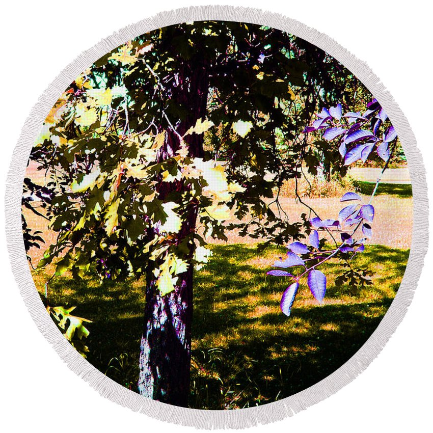 Tree In Summer Round Beach Towel featuring the photograph Summer Sulstice by Joanne Smoley