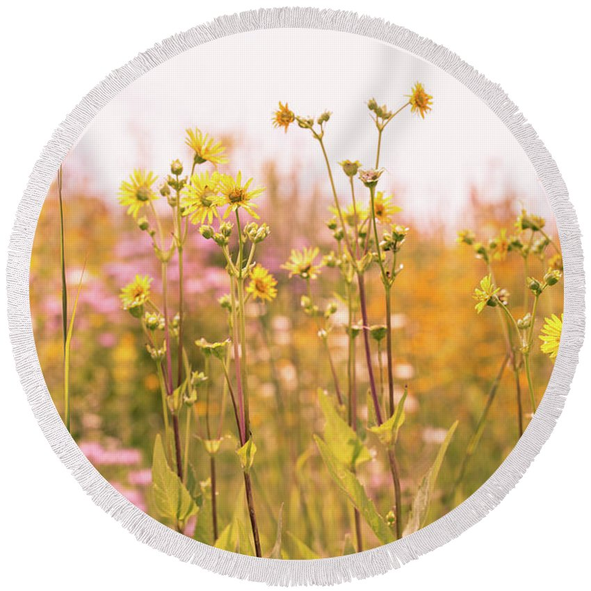 August Round Beach Towel featuring the photograph Summer Wildflower Field Of Sunflowers by Carol Mellema