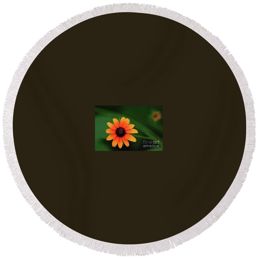 Sun Flower Greeting Cards Round Beach Towel featuring the photograph Sun Dial by Kim Henderson