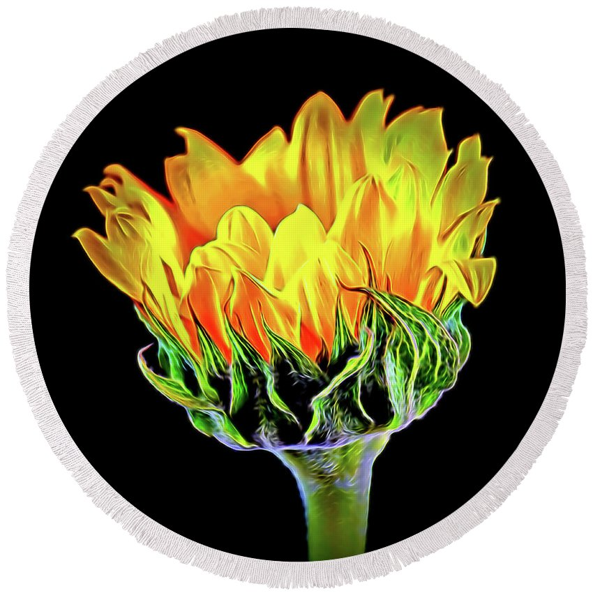 Sunflower 18-15 Round Beach Towel featuring the photograph Sunflower 18-15 by Ray Shrewsberry