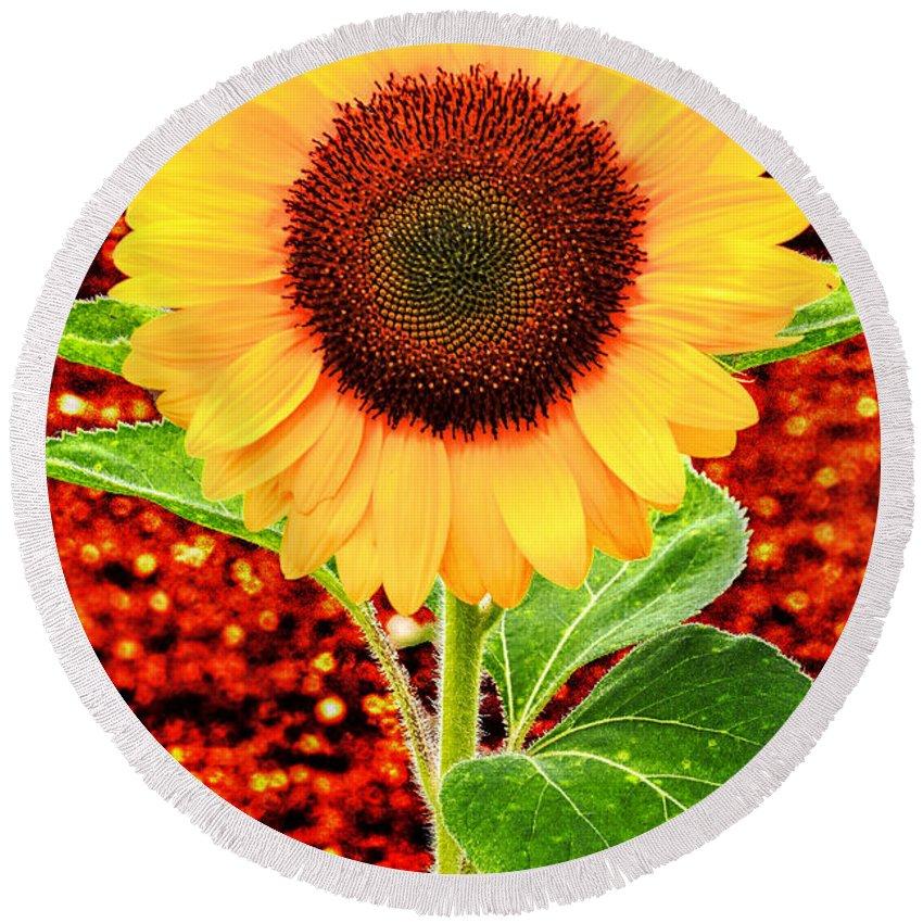 Flower Round Beach Towel featuring the photograph Sunflower 2 by Bob Slitzan