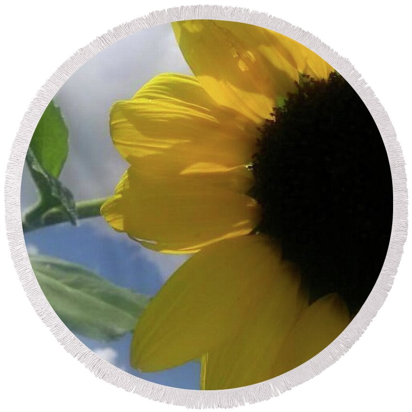 Flowers Round Beach Towel featuring the photograph Sunflower by Beverly Elliott