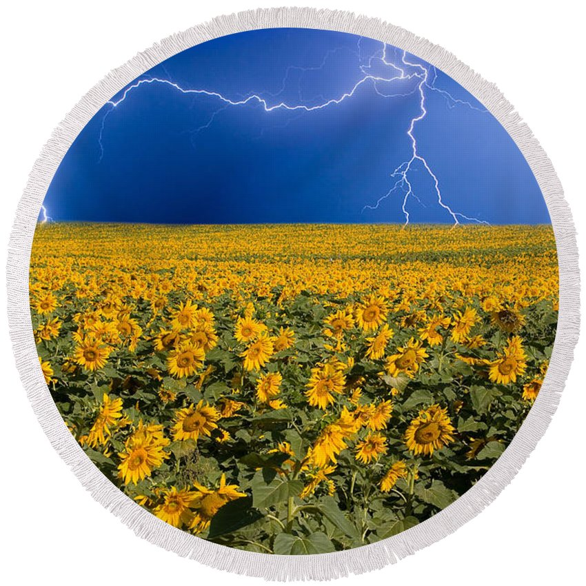 Sunflowers Round Beach Towel featuring the photograph Sunflower Lightning Field by James BO Insogna