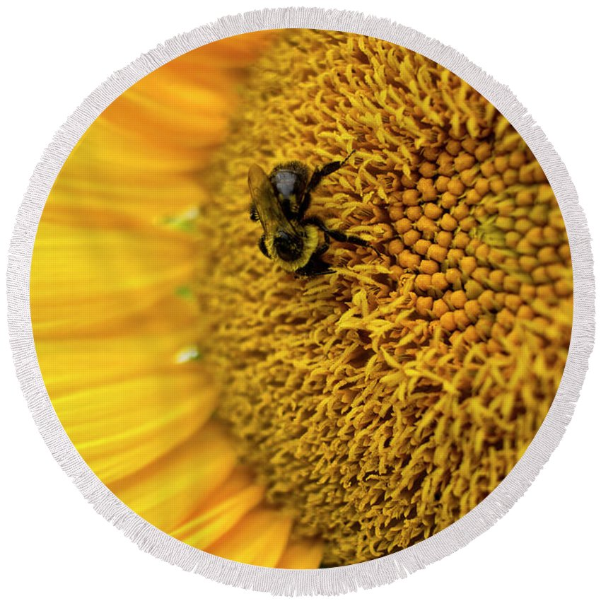 Sunflower Round Beach Towel featuring the photograph Sunflower Macro by Tammy Chesney