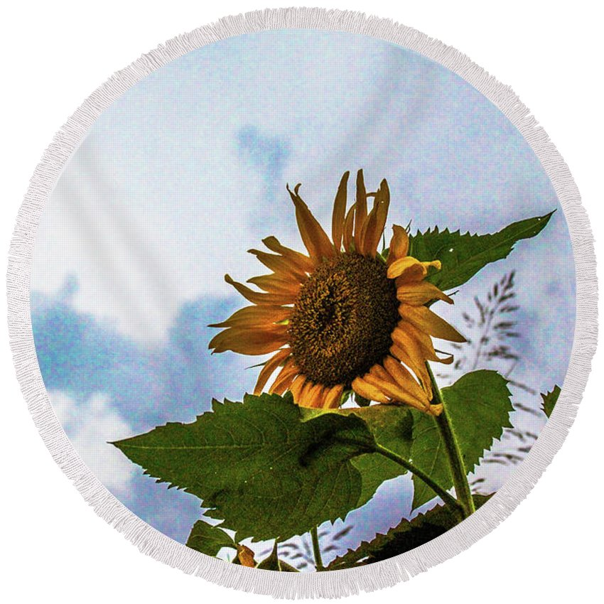 Tennessee Round Beach Towel featuring the photograph Sunflower Sky by DA Photography