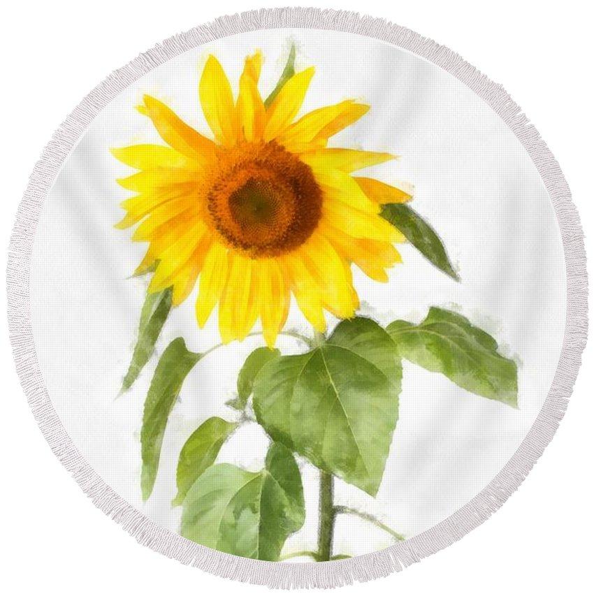 Sun Round Beach Towel featuring the digital art Sunflower Watercolor by Edward Fielding