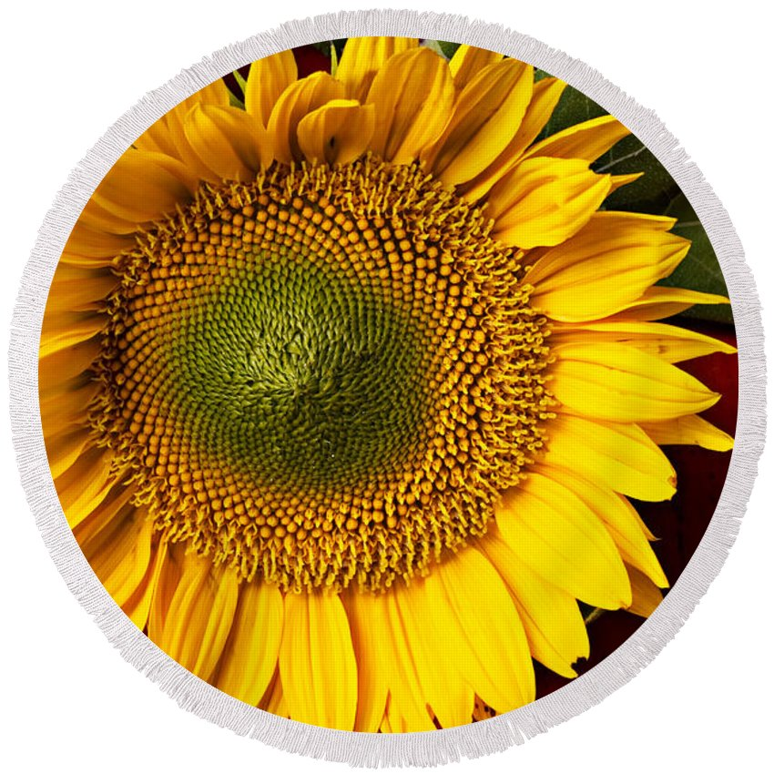 Sunflower Round Beach Towel featuring the photograph Sunflower With Old Key by Garry Gay