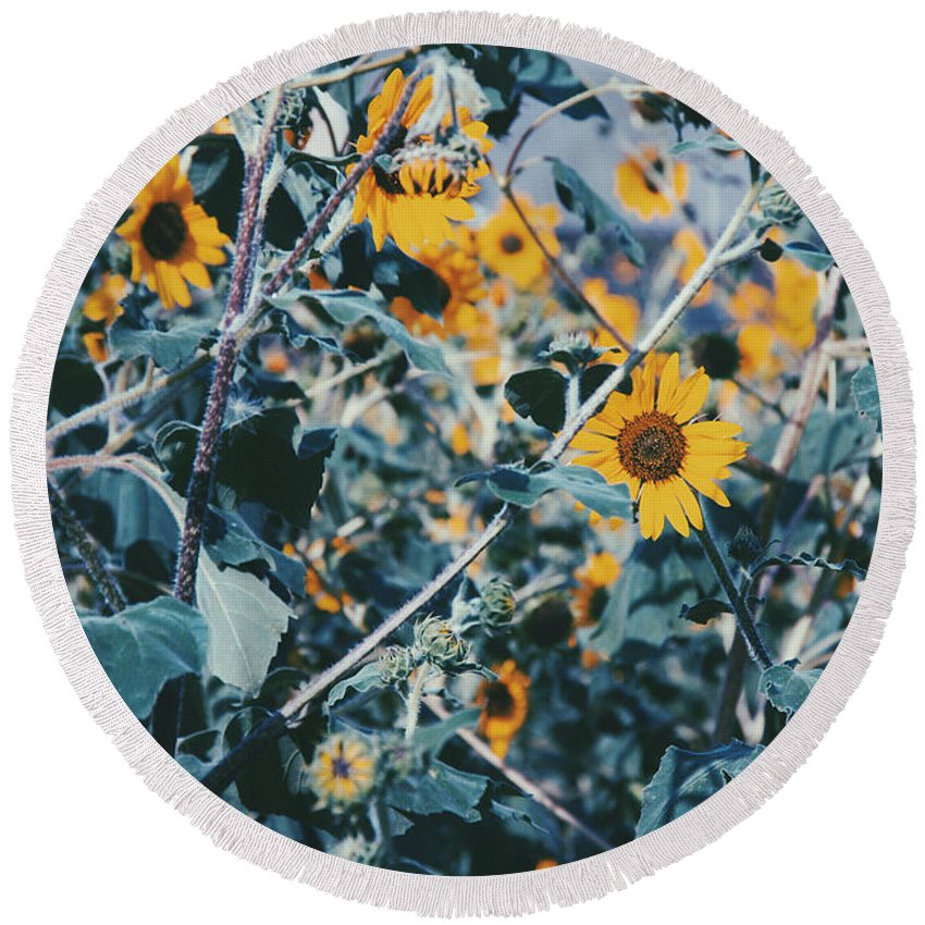 Round Beach Towel featuring the photograph Sunflowers by Emily Miller