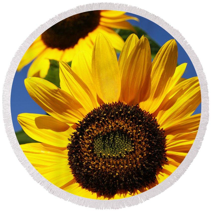 Sunflowers Round Beach Towel featuring the photograph Sunflowers by Gaspar Avila