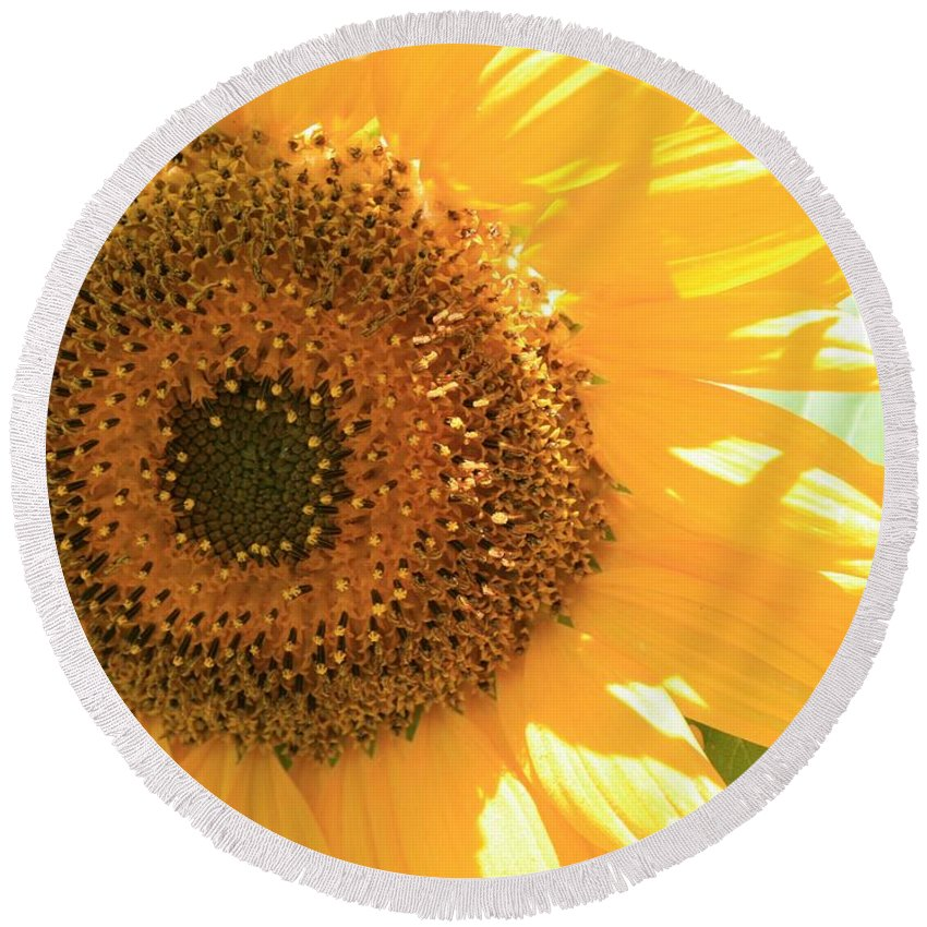 Sunflower Round Beach Towel featuring the photograph Sunflowers by Marna Edwards Flavell
