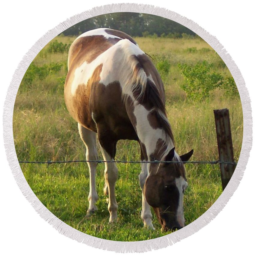 Horse Round Beach Towel featuring the photograph Sunkissed Tobiano by Brandy Woods