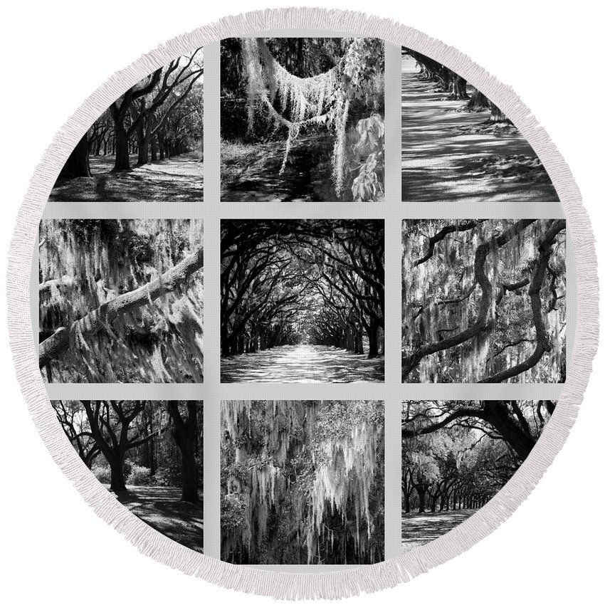 Live Oaks Round Beach Towel featuring the photograph Sunlight Through Live Oaks Collage by Carol Groenen