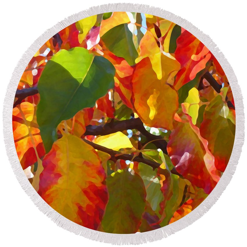 Fall Leaves Round Beach Towel featuring the photograph Sunlit Fall Leaves by Amy Vangsgard