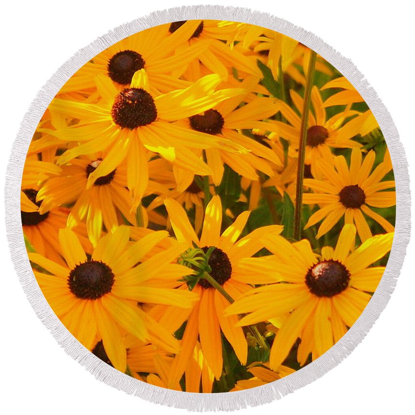 Blackeye Susan Round Beach Towel featuring the photograph Sunny Days by Beth Collins