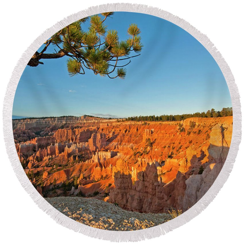 Bryce Canyon Sunrise Tree Utah Round Beach Towel featuring the photograph Sunrise At Bryce by Eric Cassel