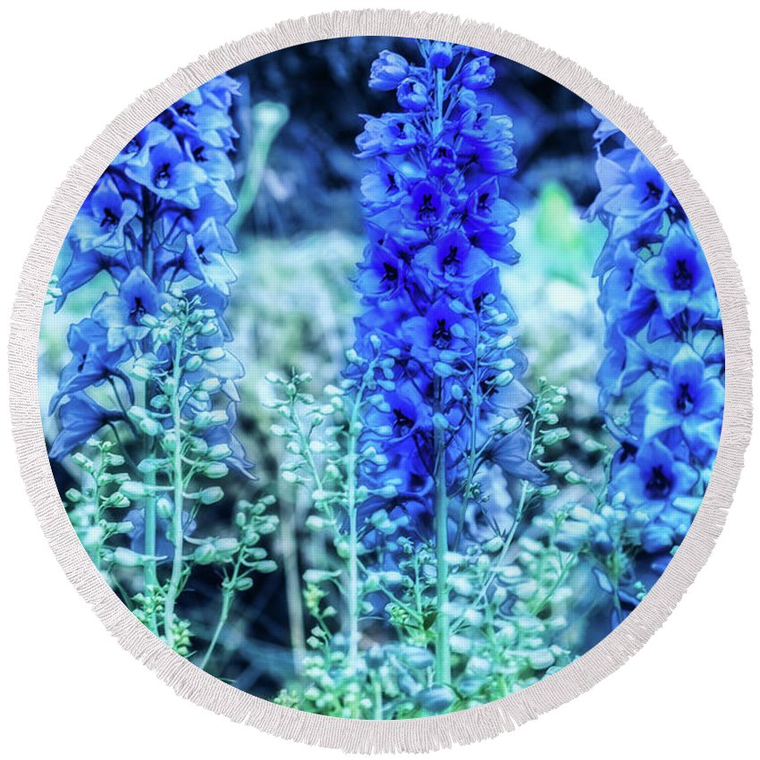 Flowers Round Beach Towel featuring the photograph Sunrise Delphiniums by Heather Hubbard