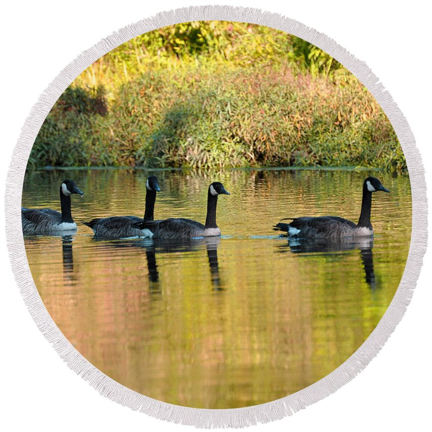 Geese Round Beach Towel featuring the photograph Sunset Goose by Todd Hostetter